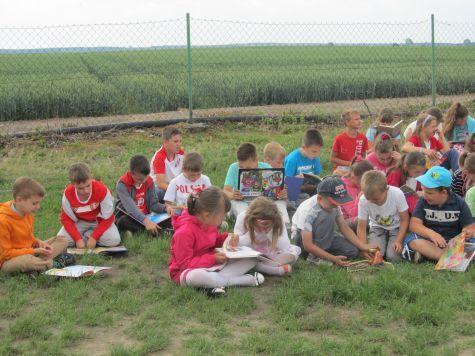 czytanie na trawie 3